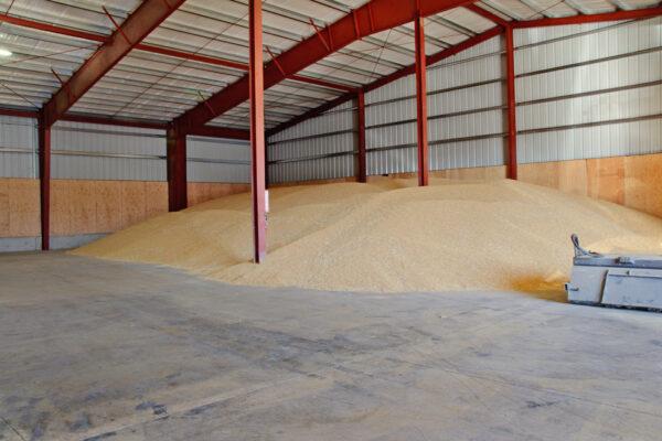 Bulk Seed Storage Metal Building